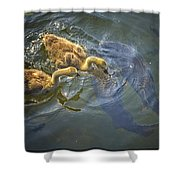 Back Up Shower Curtain