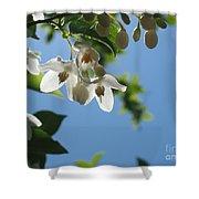 Backlit Blossom Shower Curtain