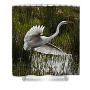 Backlit Eqret Shower Curtain
