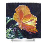 Backlit Hibiscus Shower Curtain