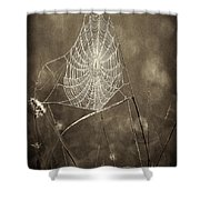 Backlit Spider Web In Sepia Tones Shower Curtain