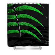 Backyard Abstract Shower Curtain