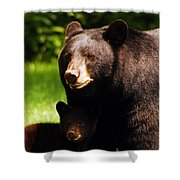 Backyard Bears Shower Curtain