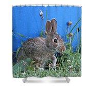 Backyard Bunny Shower Curtain