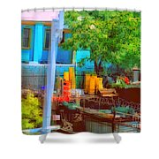 Backyard In Bright Colors Shower Curtain
