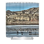 Badlands Spring Thaw Shower Curtain