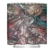 Bag Of  Frogs Shower Curtain