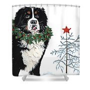 Bah Humb Merry Christmas Shower Curtain by Liane Weyers