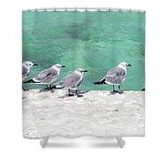 Bahama Birds Shower Curtain