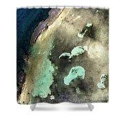Bahama Reef Shower Curtain