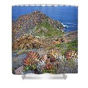 Baja California Coast Shower Curtain