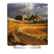 Baked Earth Shower Curtain