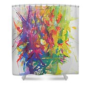 Balance Brings Happiness Shower Curtain