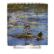 Balancing Act V5 Shower Curtain