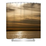 Balboa Gold Tones Shower Curtain