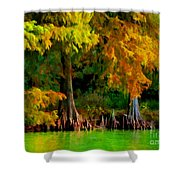 Bald Cypress 4 - Digital Effect Shower Curtain