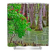 Bald Cypress And Red Buckeye Tree At Mile 122 Of Natchez Trace Parkway-mississippi Shower Curtain