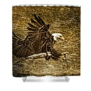 Bald Eagle Capture Shower Curtain