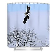Bald Eagle Courtship Ritual  1337 Shower Curtain