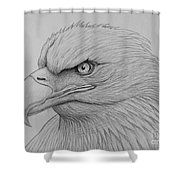 Bald Eagle Drawing Shower Curtain