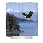 Bald Eagle In Flight Over The Inside Shower Curtain