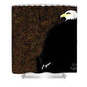 Bald Eagle In Repose Shower Curtain
