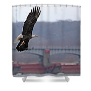 Bald Eagle Leaves With Fish At Lock And Dam 14 Shower Curtain