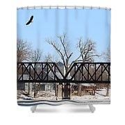 Bald Eagle Near Ludwig Mill Shower Curtain