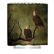 Bald Eagle Serenade Shower Curtain