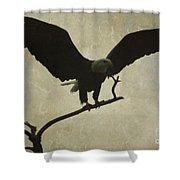 Bald Eagle Texture Shower Curtain