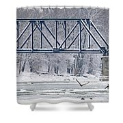 Bald Eagle With Fish By Railroad Bridge 6639 Shower Curtain