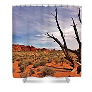 Bald Tree At Arches  Shower Curtain