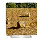 Bales In The Golden Hour Shower Curtain