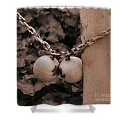 Ball And Chain Closure  Shower Curtain