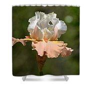 Ballerina Iris Shower Curtain