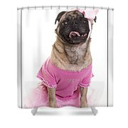 Ballerina Pug Dog Shower Curtain