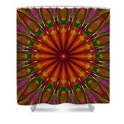 Balloon Kaleidoscope Shower Curtain