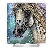 Balon Polish Arabian Horse Portrait 4 Shower Curtain