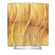 Balsa Woods Shower Curtain