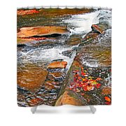 Balsam River Rocks And Leaves Shower Curtain
