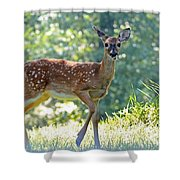 Bambi 2 Shower Curtain