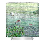 Bambi And The Twins  Shower Curtain