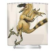 Bambiraptor, A Bird-like Dromaeosaurid Shower Curtain