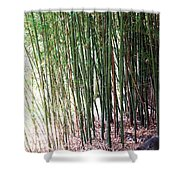 Bamboo By Roadsides Cherry Hill Roadside Greens            Shower Curtain