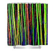 Bamboo Dream Shower Curtain