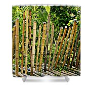 Bamboo Fencing Shower Curtain by Lilliana Mendez