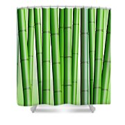 Bamboo Forest Background 2 Shower Curtain