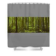 Bamboo Forest Twilight  Shower Curtain