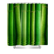 Bamboo Forest With Water Reflection Shower Curtain
