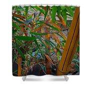 Bamboo Garden Shower Curtain